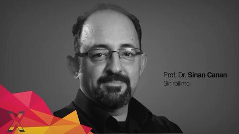 Bilmeden Bilmek: Örüntü Gözü | Prof. Dr. Sinan Canan | TEDxSEVAmericanCollege