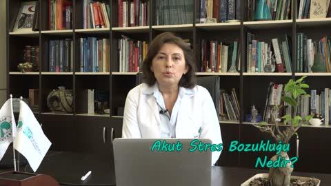 Akut Stres Bozukluğu Kısa Süreli ve Geçicidir -Psikiyatri Uzmanı Semra Baripoğlu