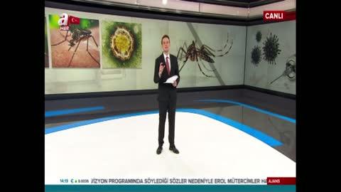 Asya kaplanı sivrisineğinin özellikleri neler?